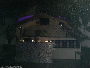 ssb_party06_24_20090822_1264202329
